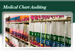 Medical Chart Auditing